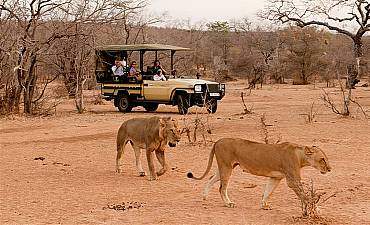 VALUE TIER 3 - RUAHA ADVENTURE SAFARI