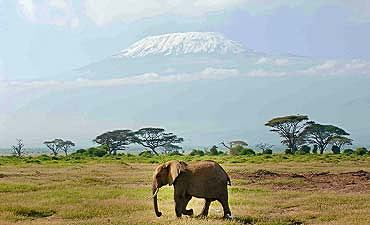 BEAUTY OF KENYA & TANZANIA SAFARI - 10 DAYS