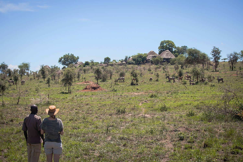 Hikes, Treks & Walking Safaris in Kidepo Valley