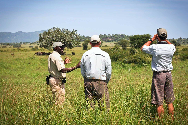 Kidepo Valley Hikes & Walking Safari