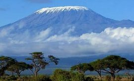 CLIMB OR TREK MOUNT KILIMANJARO