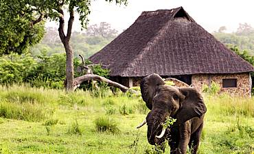SELOUS LODGES & CAMPS