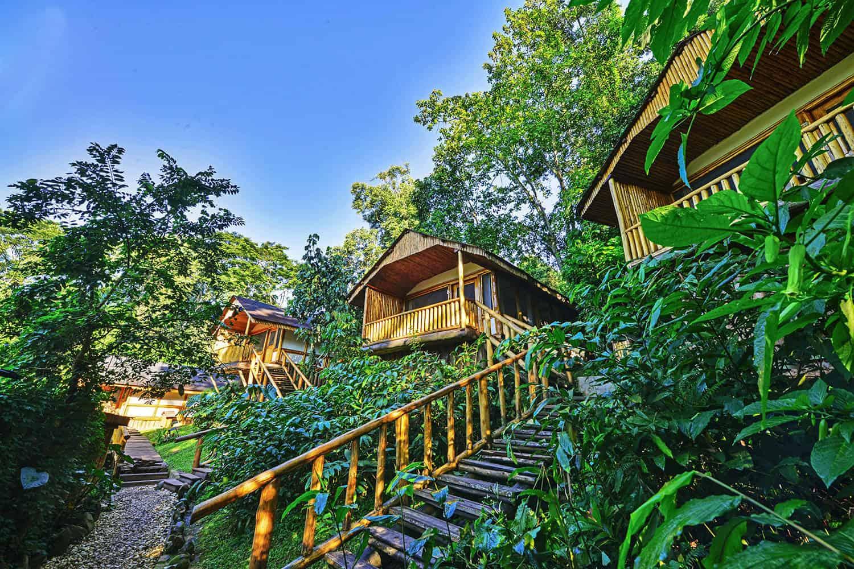Buhoma Lodge Bwindi Park View