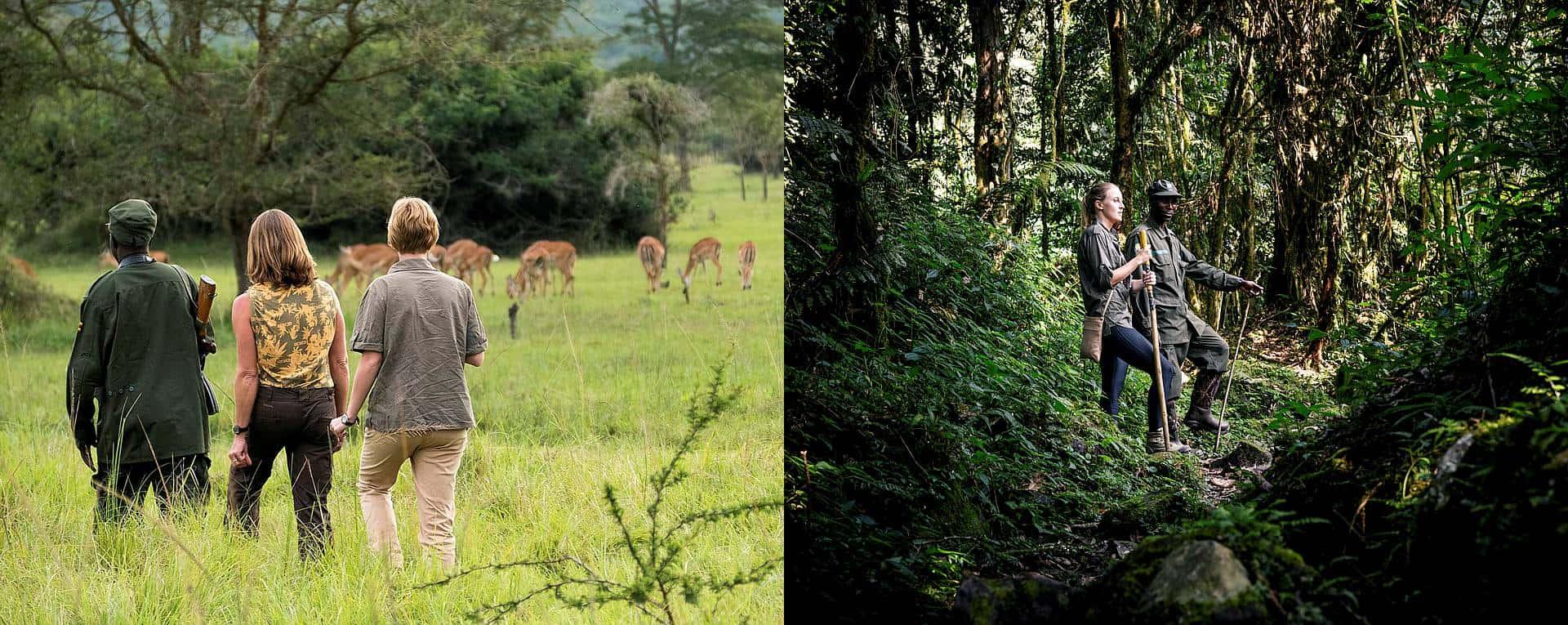 Hiking, Trekking & Bush Walking Safaris Trip Planning Guide For Uganda