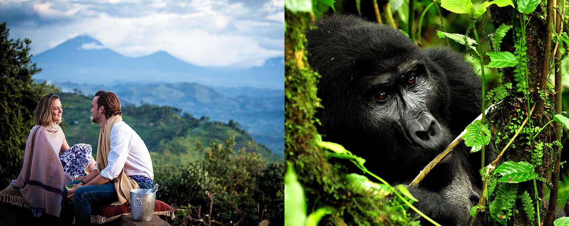 Uganda Trip Ideas & Booking Itineraries