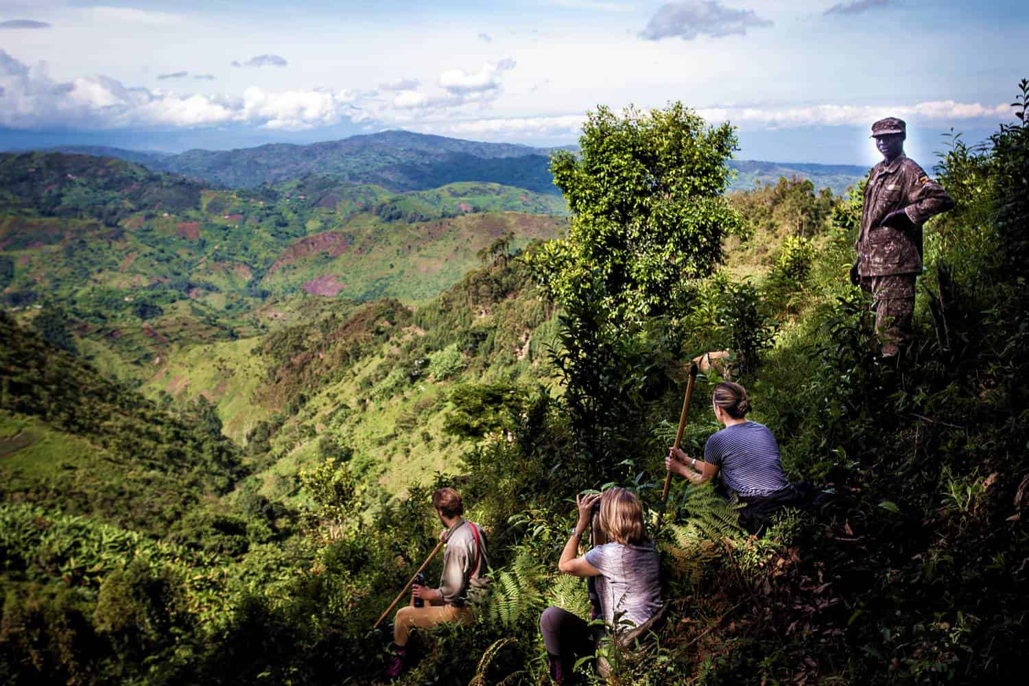 Which Sectors In Bwindi Are The Gorilla Families Seen