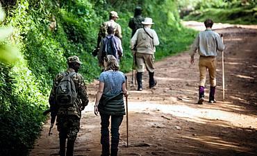 UGANDA BUSH WALK, HIKE & TREK
