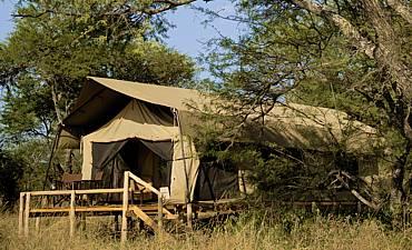 DUNIA CAMP (ASILIA AFRICA)