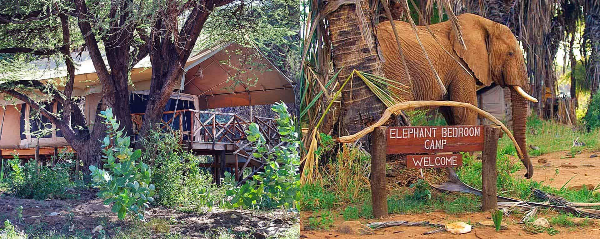 elephantbedroomcamp1