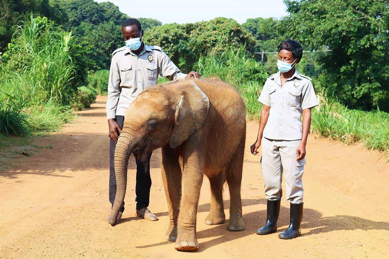 Excursion To Uganda Wildlife Conservation Education Center