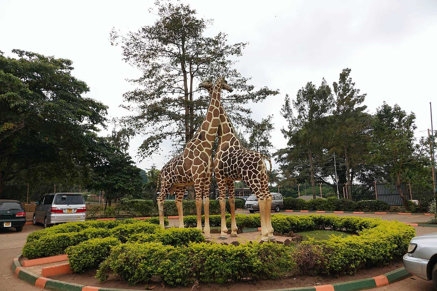 What Are The Experiences In Entebbe