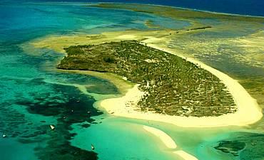 FANJOVE ISLAND GUIDE