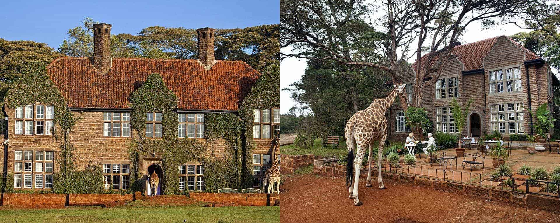 Rooms: Photos, Images & Pictures For Giraffe Manor In Nairobi