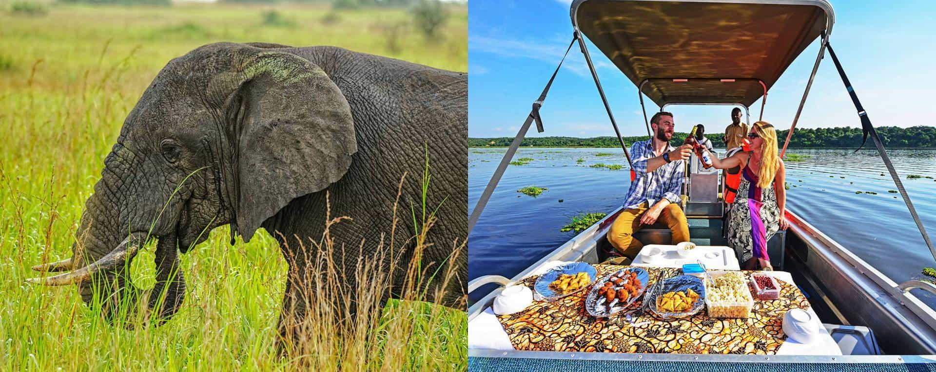 Honeymoon Safaris Trip Planning Guide For Uganda