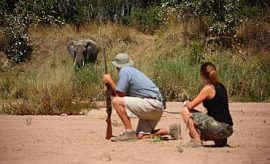 RUAHA SAFARI & TOUR