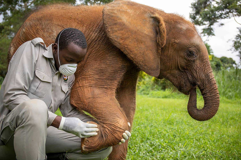 Uganda Wildlife Conservation Education Center Visit