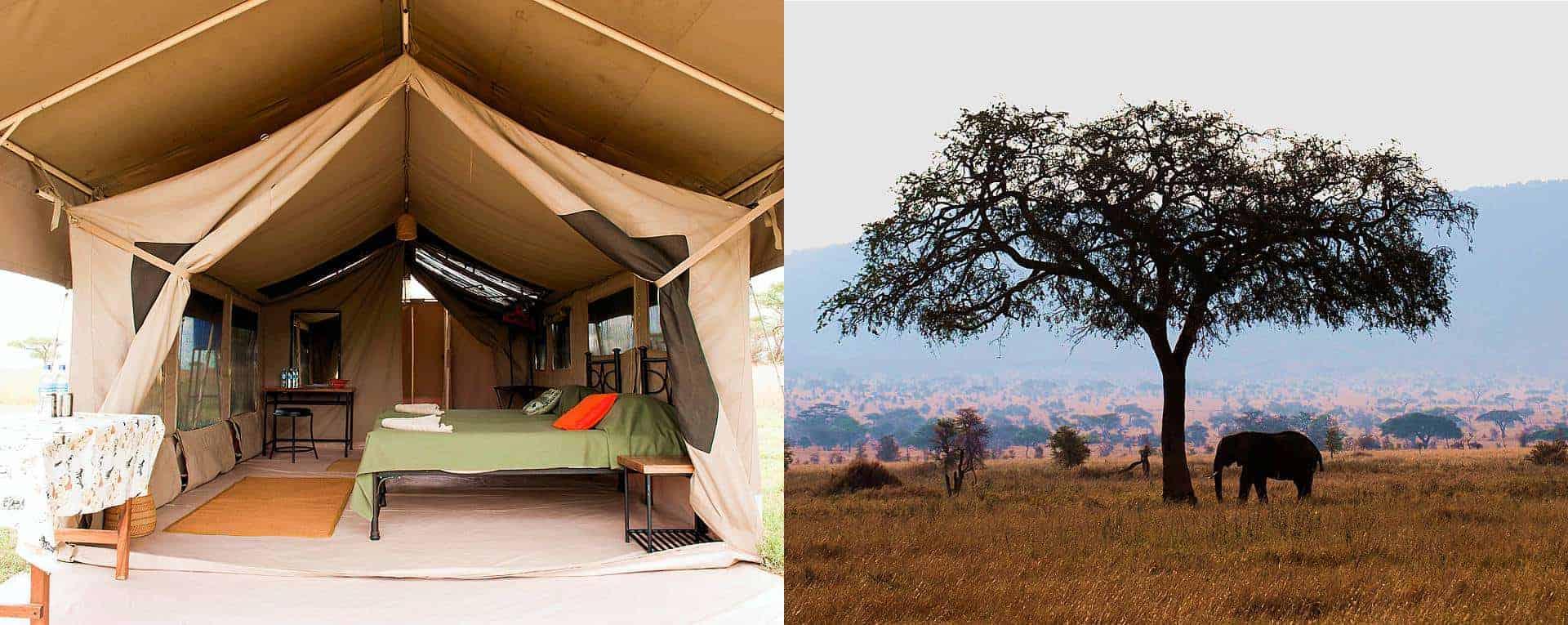 Expert Rating Reviews >> Kati Kati Tented Camp (Central, Mara & Ndutu), Serengeti ...