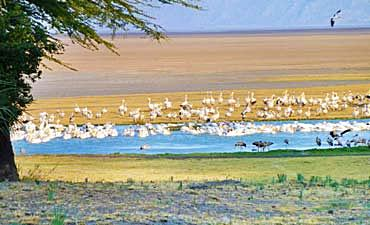 BEST TIME TO VISIT LAKE EYASI