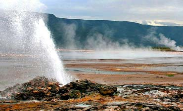 SAFARI & TOUR IN LAKE BOGORIA