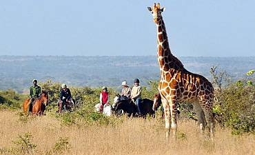 HORSEBACK SAFARIS IN AFRICA