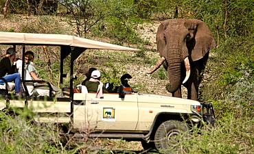 FAMILY SAFARIS IN TANZANIA