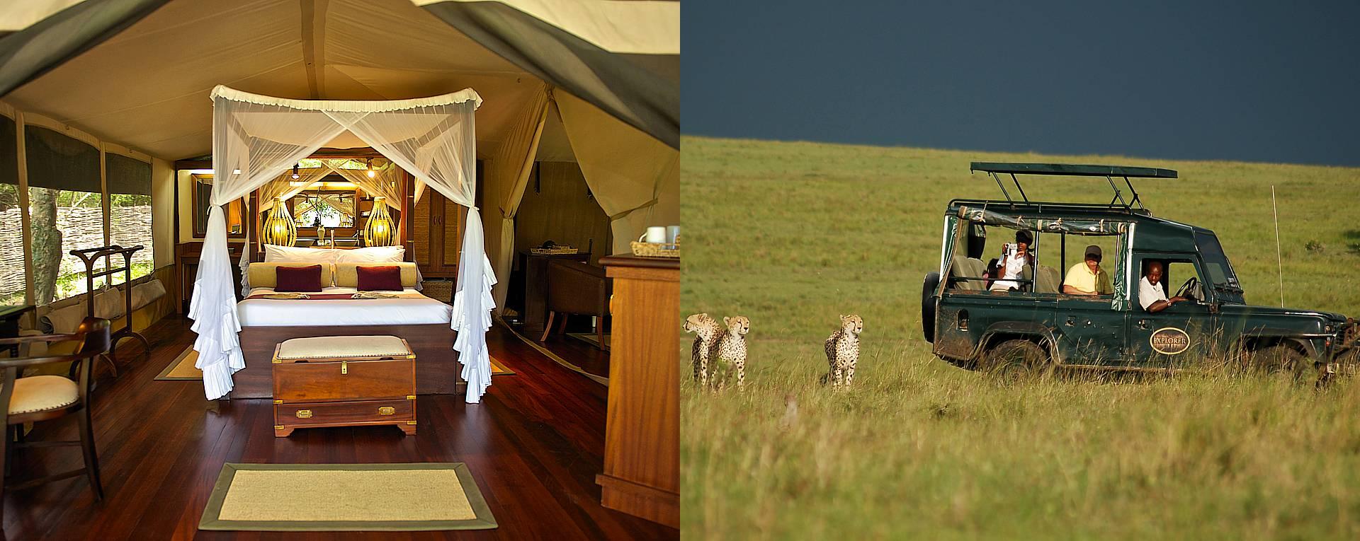 Expert Rating Reviews >> Mara Intrepids Camp, Masai Mara - Kenya - AfricanMecca Safaris & Tours