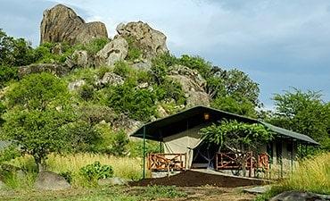 MBUZI MAWE CAMP
