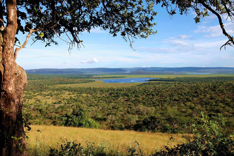 The Beautiful, Diverse & Aquatic Ecology Of Lake Mburo