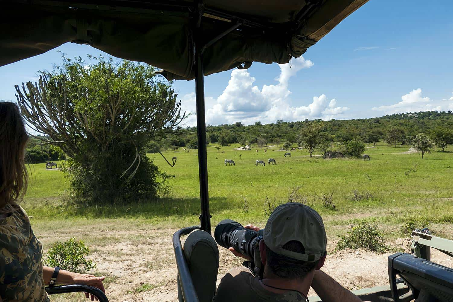 Game Drives To View The Diverse Wildlife Of Lake Mburo