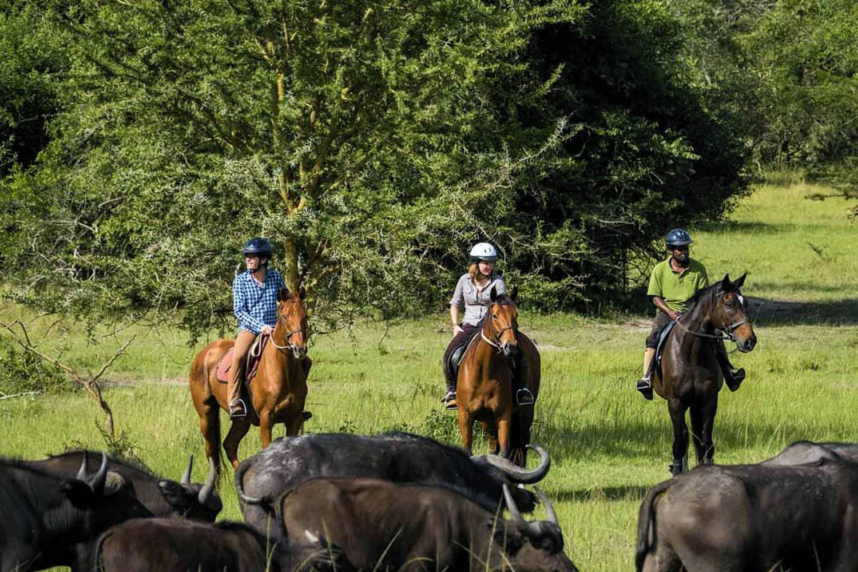 Horseback Safaris In Lake Mburo Park