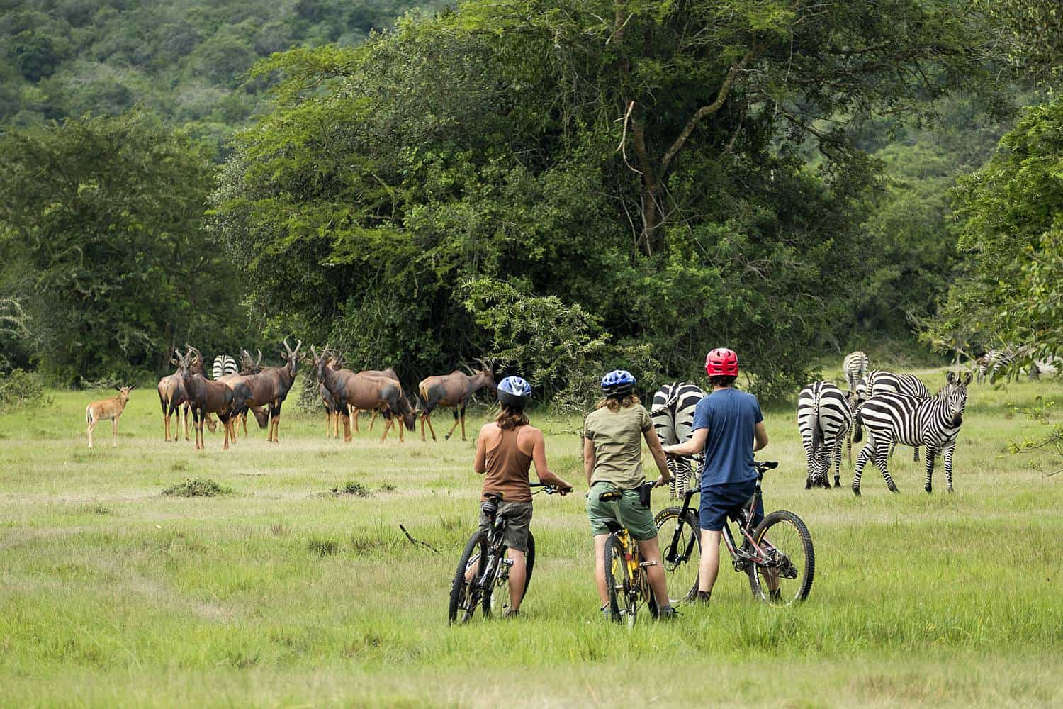 A One-Stop Safari Country For A Range Of Adventures - Exciting Or Tranquil