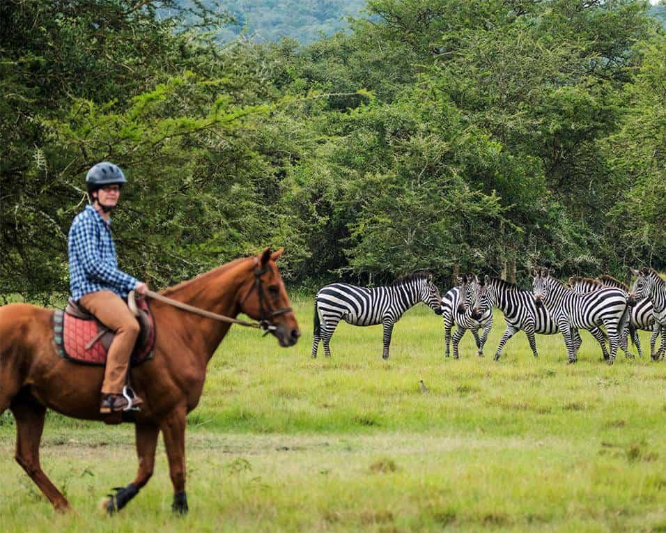 Unique Safari Experiences In Lake Mburu Park