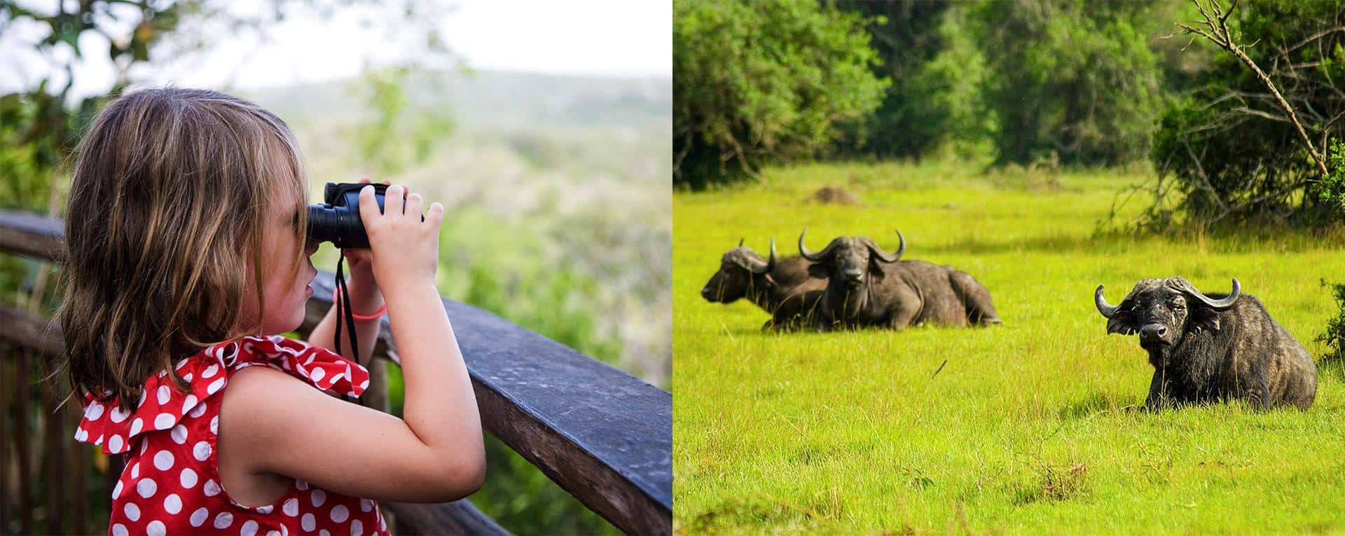 Best Time For Vacationing With Children In Uganda