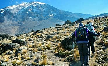 KILIMANJARO TREK GUIDE- HOME