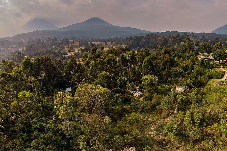 Mgahinga Park Treks