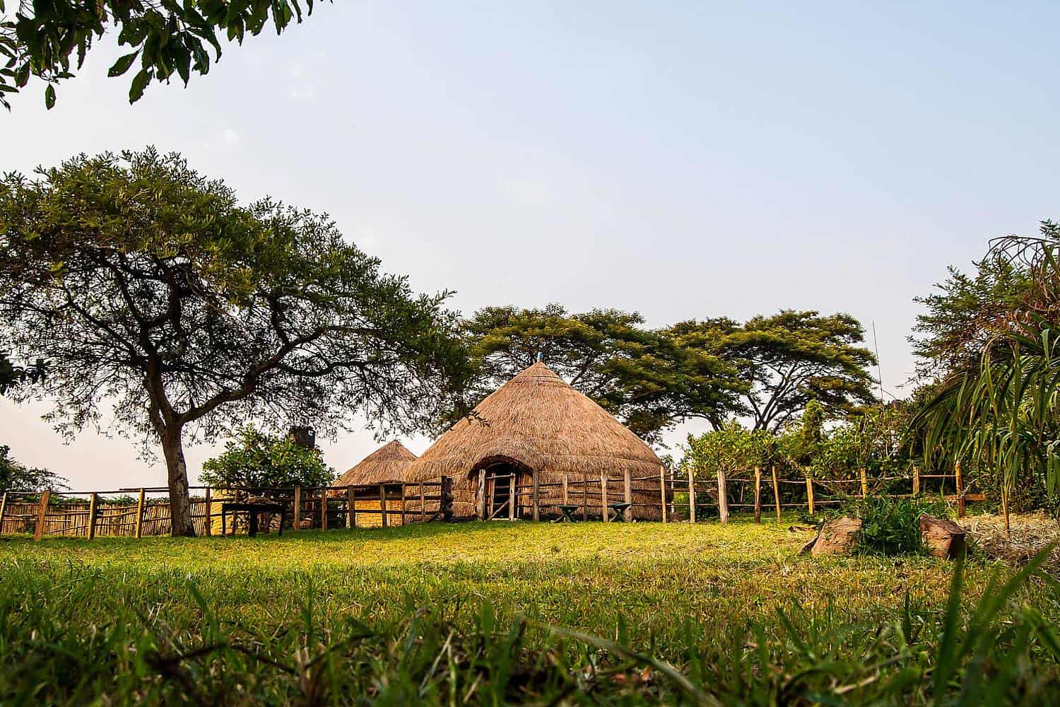 Authentic Cultural Experience Of The Nshenyi Village - Ankole Tribe