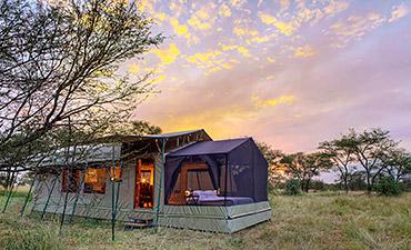OLAKIRA CAMP (ASILIA AFRICA)