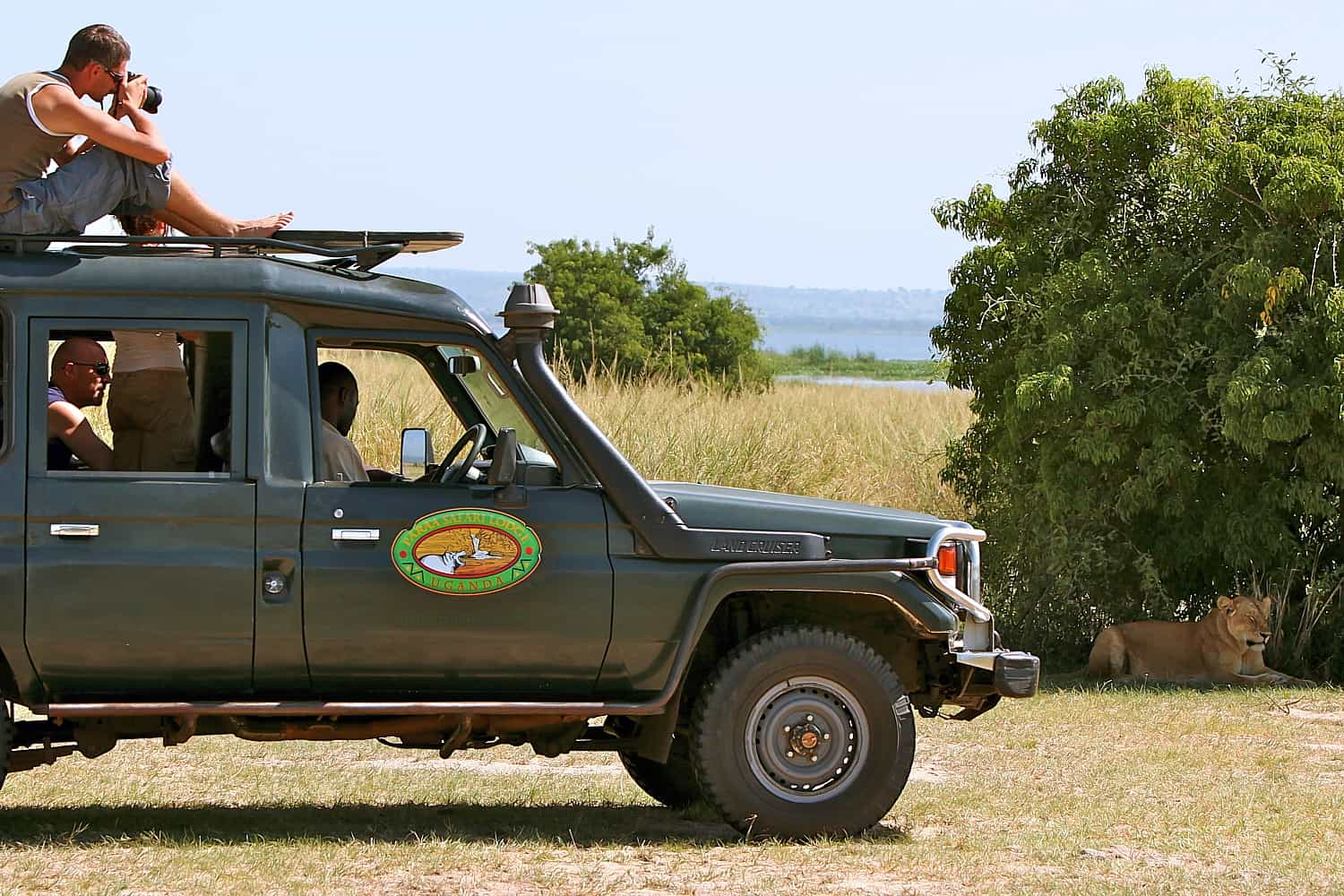 Game Drives To View The Diverse Wildlife Of Murchison Falls