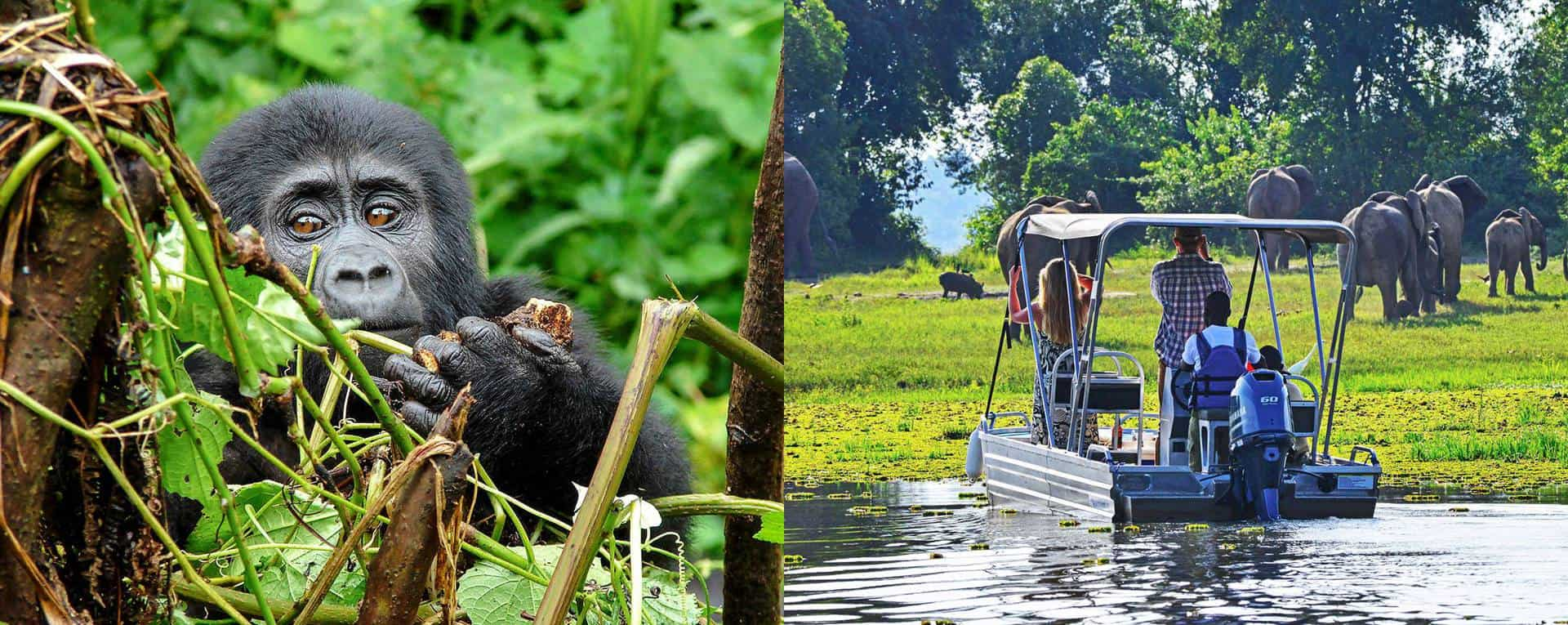 Private & Tailor-Made Trip Planning Guide For Uganda