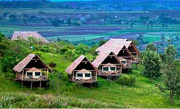 REVIEWS FOR NGORONGORO HIGHLANDS