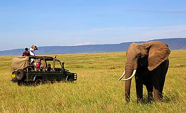 MASAI MARA CONSERVANCIES
