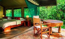 PLACES TO STAY IN AKAGERA