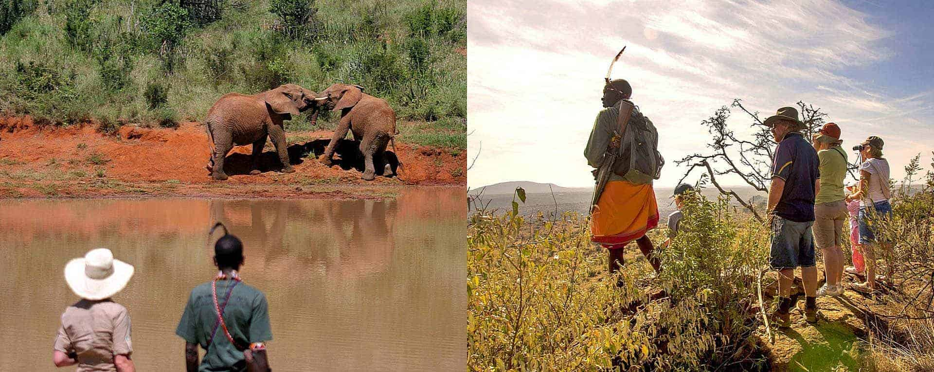 Safari Tour Guide Jobs Africa