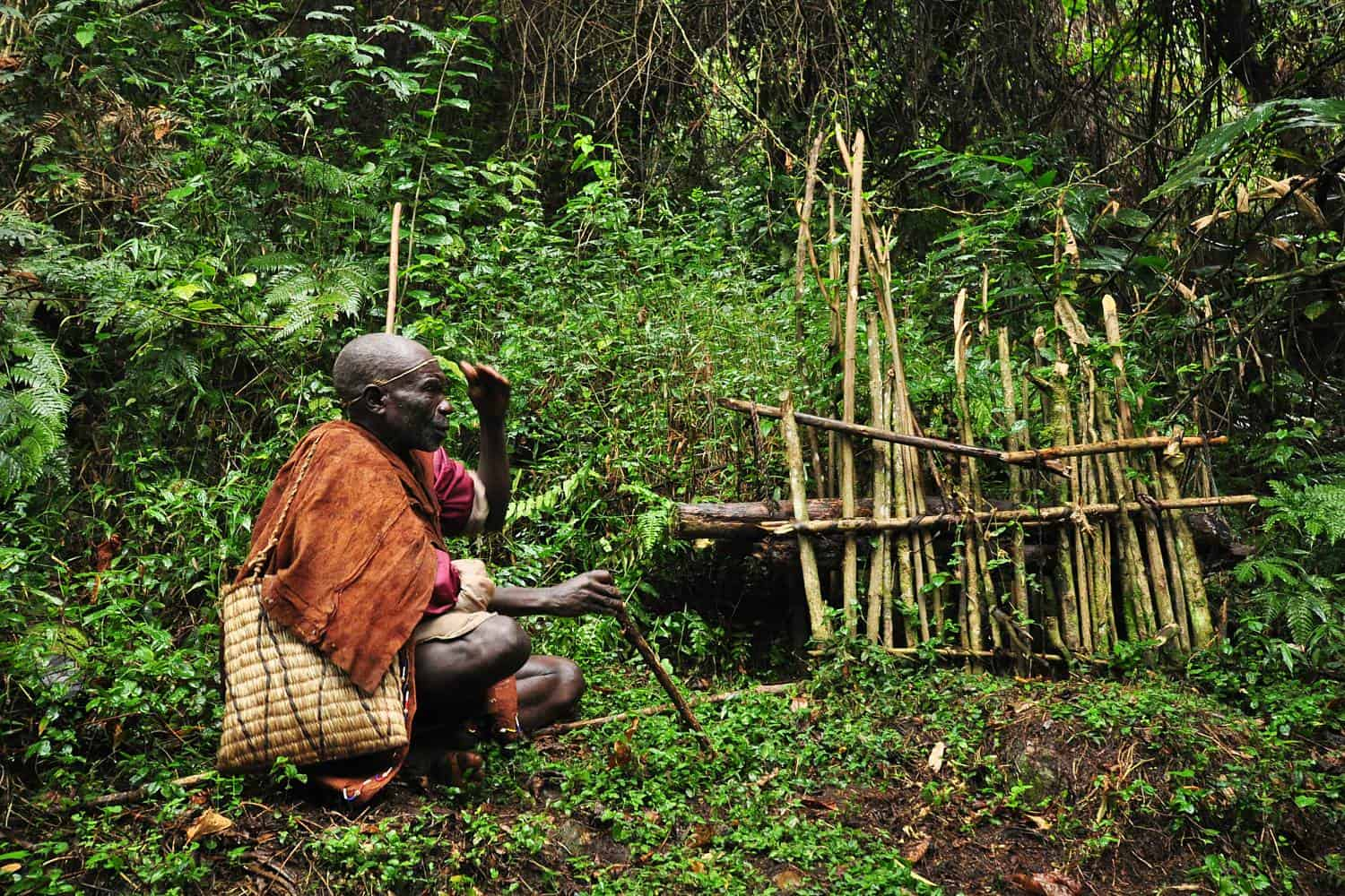 Cultural Interactions & Tour Visits To Tribal Communities In Bwindi