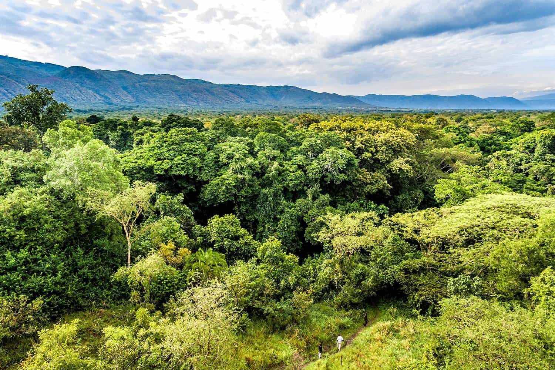 Best Time, Seasons & Months To Go On Safari In Semliki