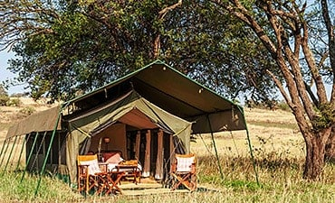 SERENGETI SAFARI CAMP (NOMAD)