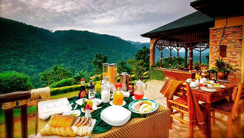 Silverback Lodge Meals Bwindi Dining