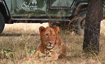 GUIDE ON SELOUS RESERVE