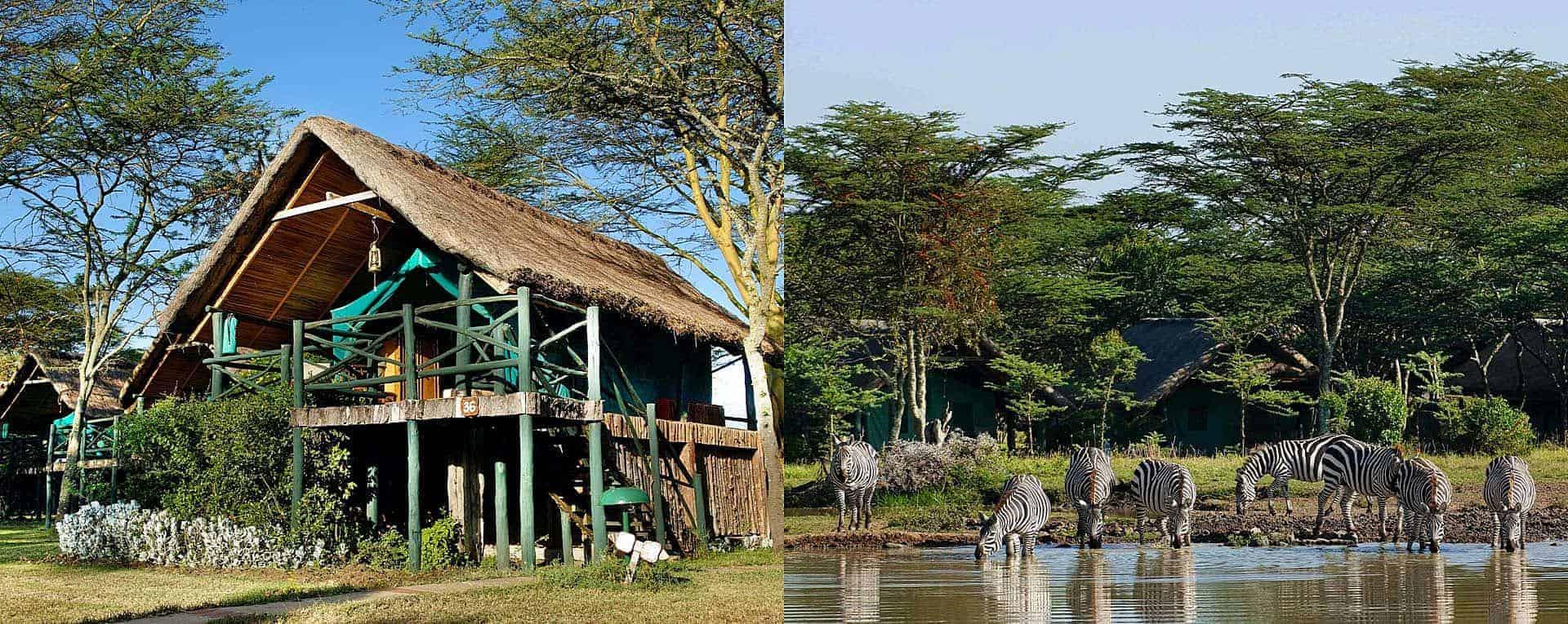 Sweetwaters Serena Camp Laikipia Kenya Africanmecca