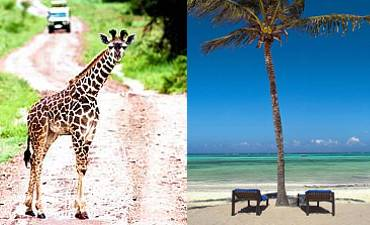 TANZANIA BUSH & BEACH HOLIDAYS